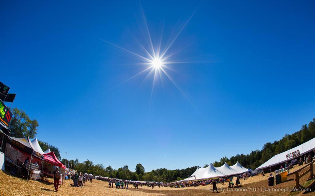 The Festy Experience 2016 Sun Infinity Downs Farm