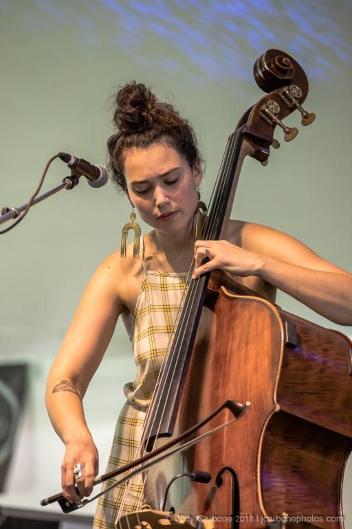 Cicada Rhythm Red Wing Roots Music Festival 2018